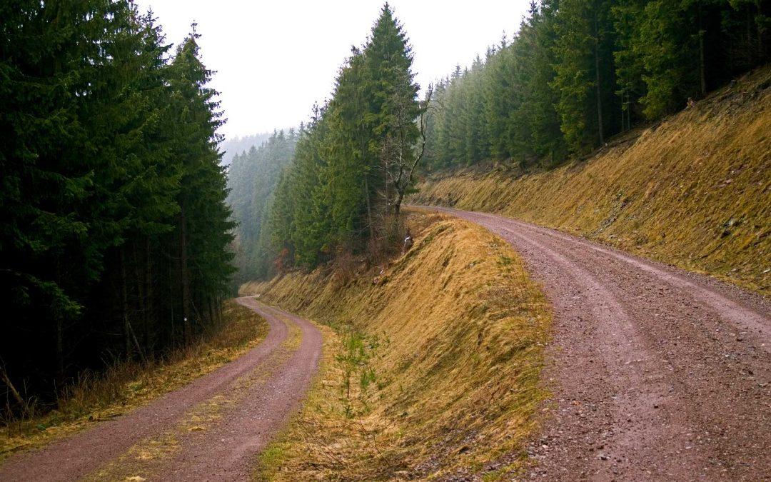 Melyik úton jársz?
